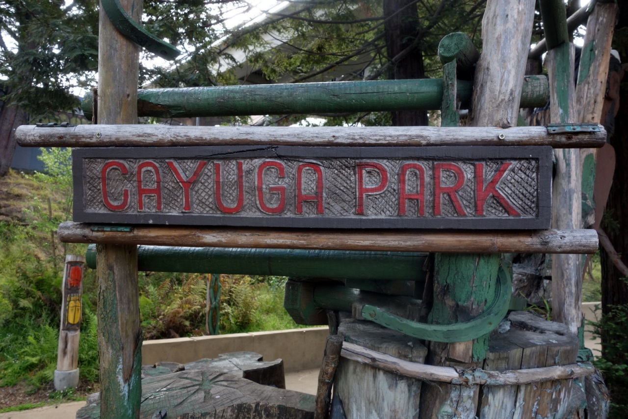 Cayuga Park